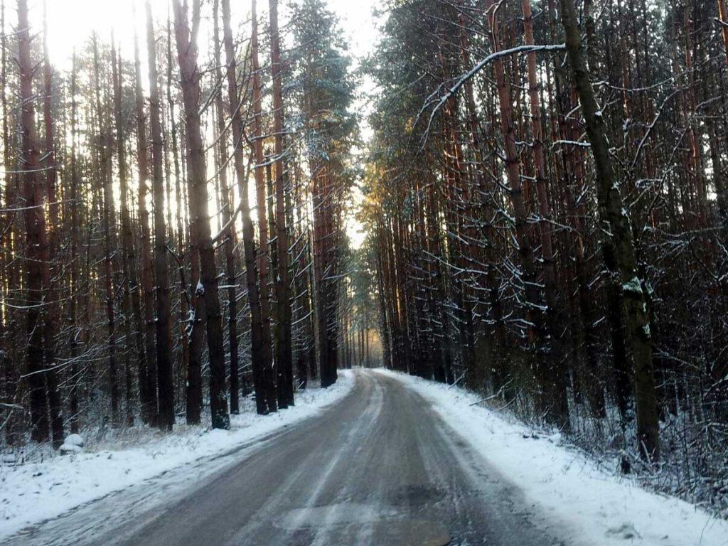 Kelias mišku
