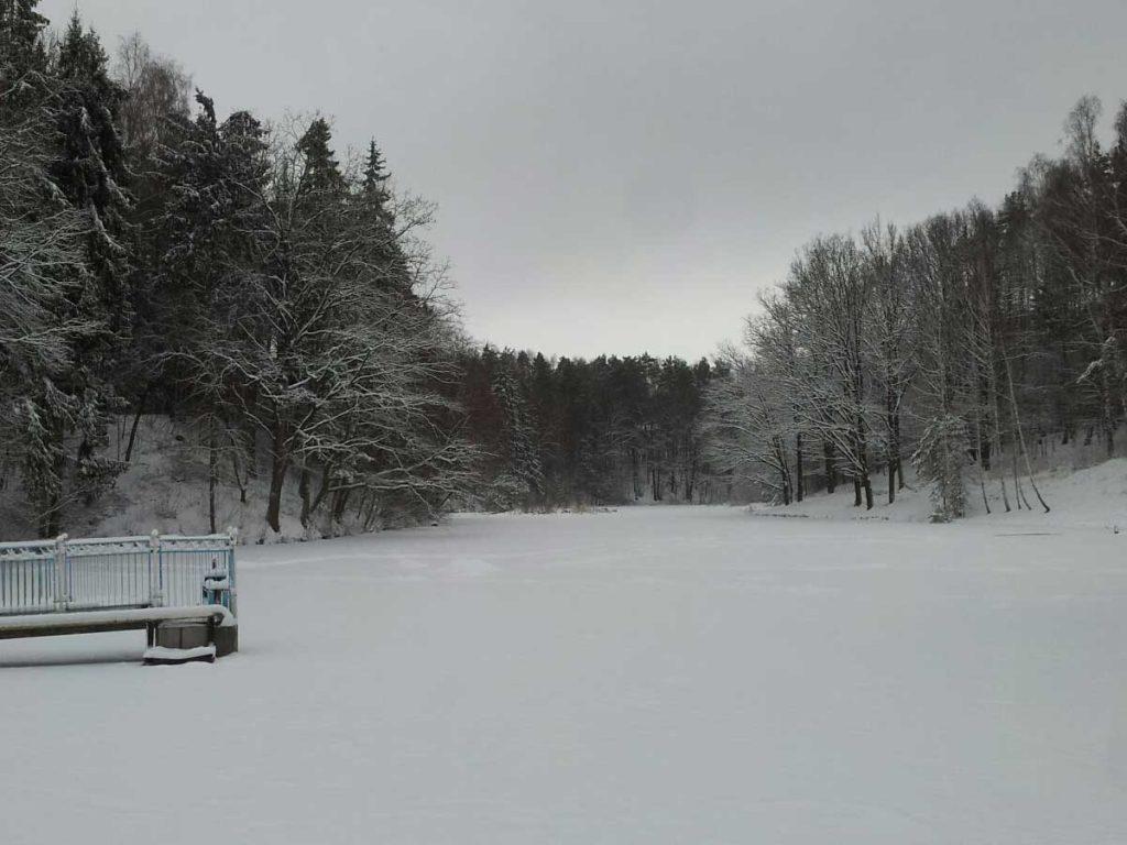 Tvenkinys žiemą