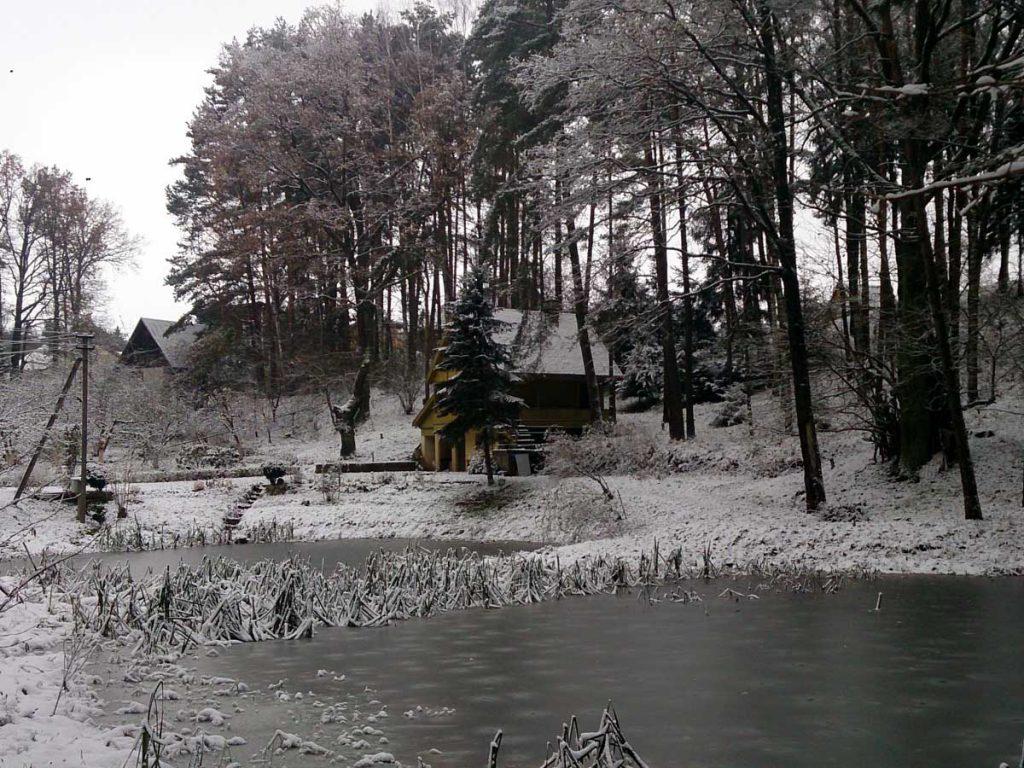 Žiema aplink