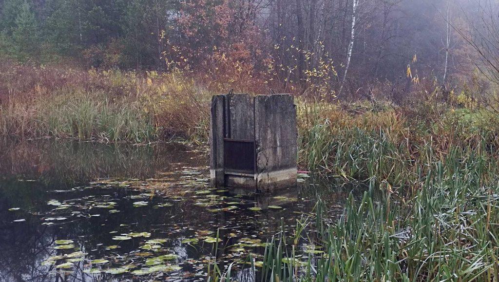 Tvenkinio užtvankos statinys (2018-11-04). Lyginant su sausros laikotarpiu, vandens lygis pakilo labai nedaug.